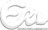 ER Consultoria Empresarial